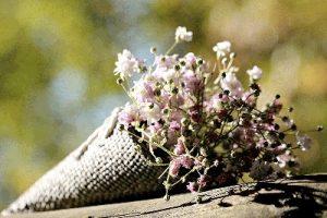 CHANDRA Elemento aria - Primavera